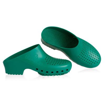 Anade-zueco-calzuro-verde
